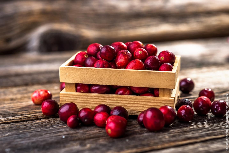 Unsere Erfahrungen mit Cranberry Kapseln - cranberry kapseln erfahrungen