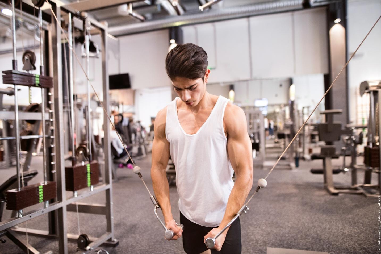 Austattung, Qualitätsmerkmale aber auch Ruhe ist in einem Fitnessstudio sehr wichtig.